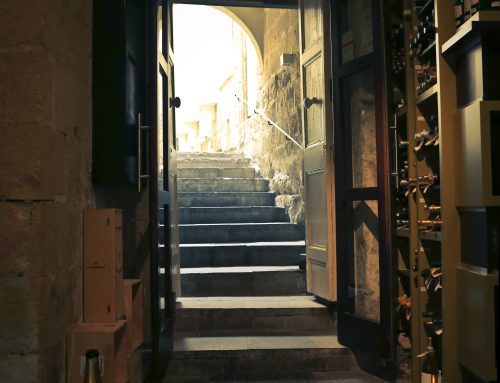 The History of the Wine Cellar